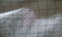 "BIRD NET 10m x 4m X 2"" MESH SQUARE dove,pigeon,"